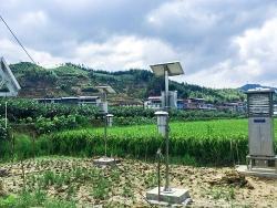 托普云农病虫害监测预警系统助力大田县绿色防控