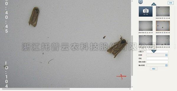 病虫害监测预警系统-托普云农物联网